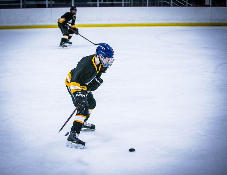Bruins2-303.jpg