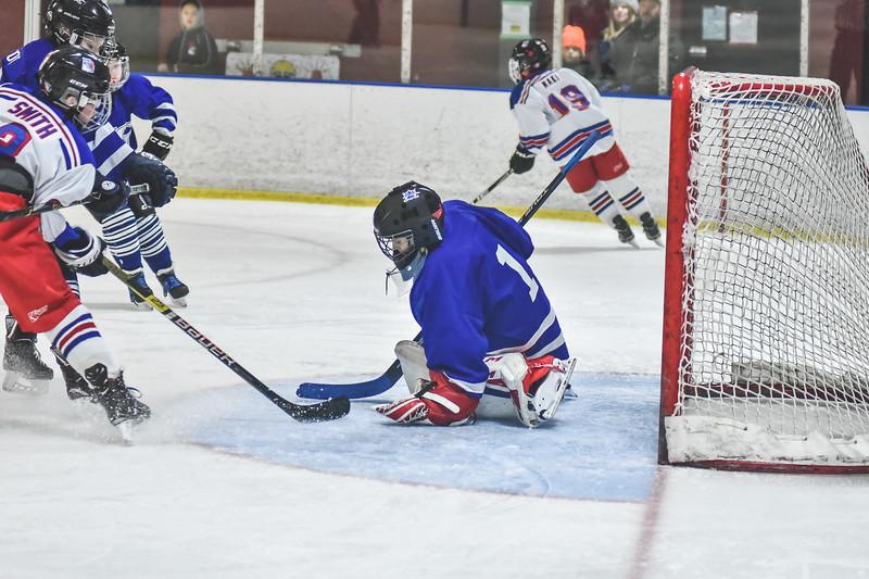 Leafs-123.jpg