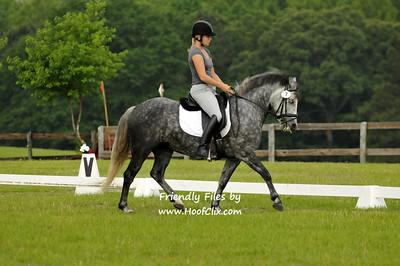 2011-05-15 USEA Horse Trial