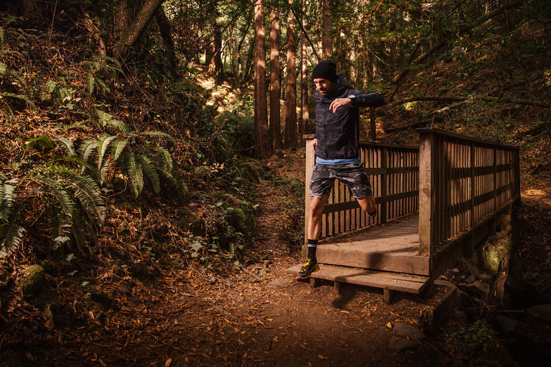 DT_redwoods_Jussioksanen_edited-1824.jpg