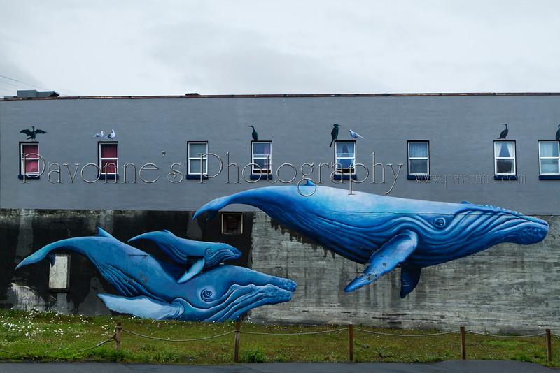 Alaska 6524.jpg