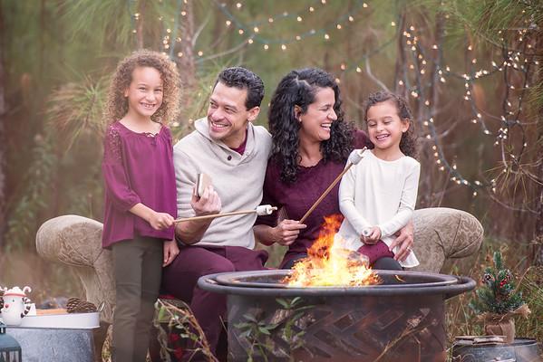 Campfire mini Nov 2018 Diaz