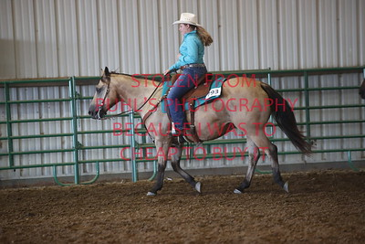 Class 11 Ranch Horse - Adult