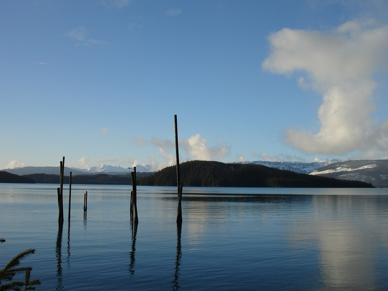 Alaska 2008 201.jpg