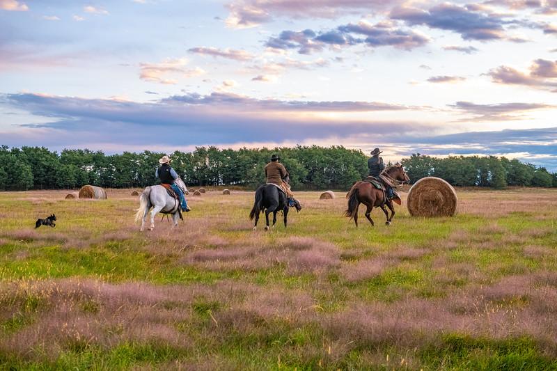 Horn Ranch-2086.jpg