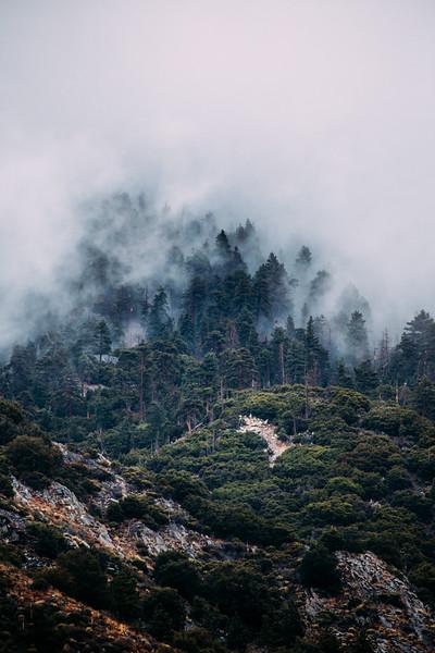 fogfogfog-4-2.jpg