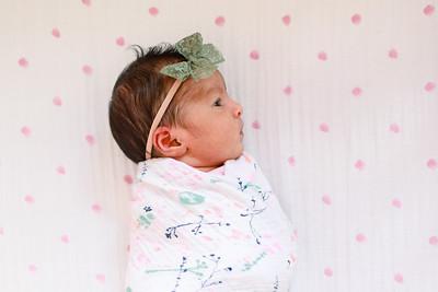 Saanvi: Newborn