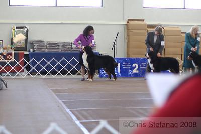 Sweeps 15-18 mos Dog-PV 09