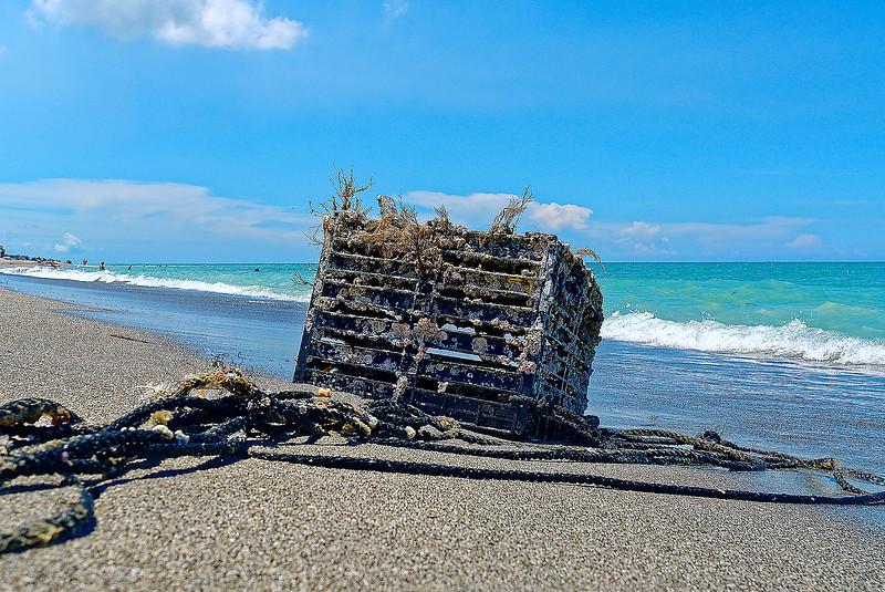 Beach Trap - Siesta Key Florida