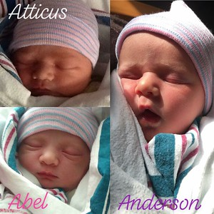 Atticus,  Abel-Leigh & Anderson