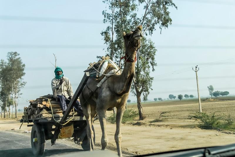 Roads_in_India_1206_029.jpg