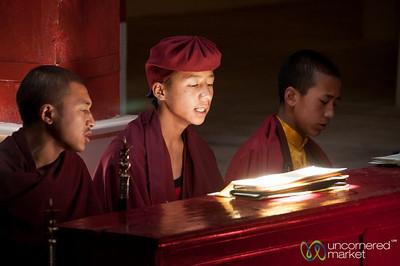 Ladakh, Best of Travel Photos