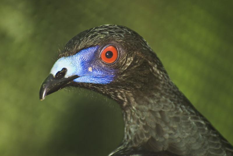 Costa Rica (114 of 104)