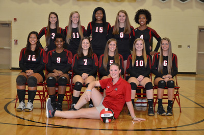2013 Butler High School Volleyball Team Pictures