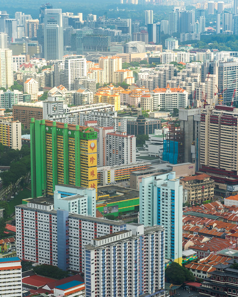 Artilect Spring City Scapes Singapore (2 of 7).jpg