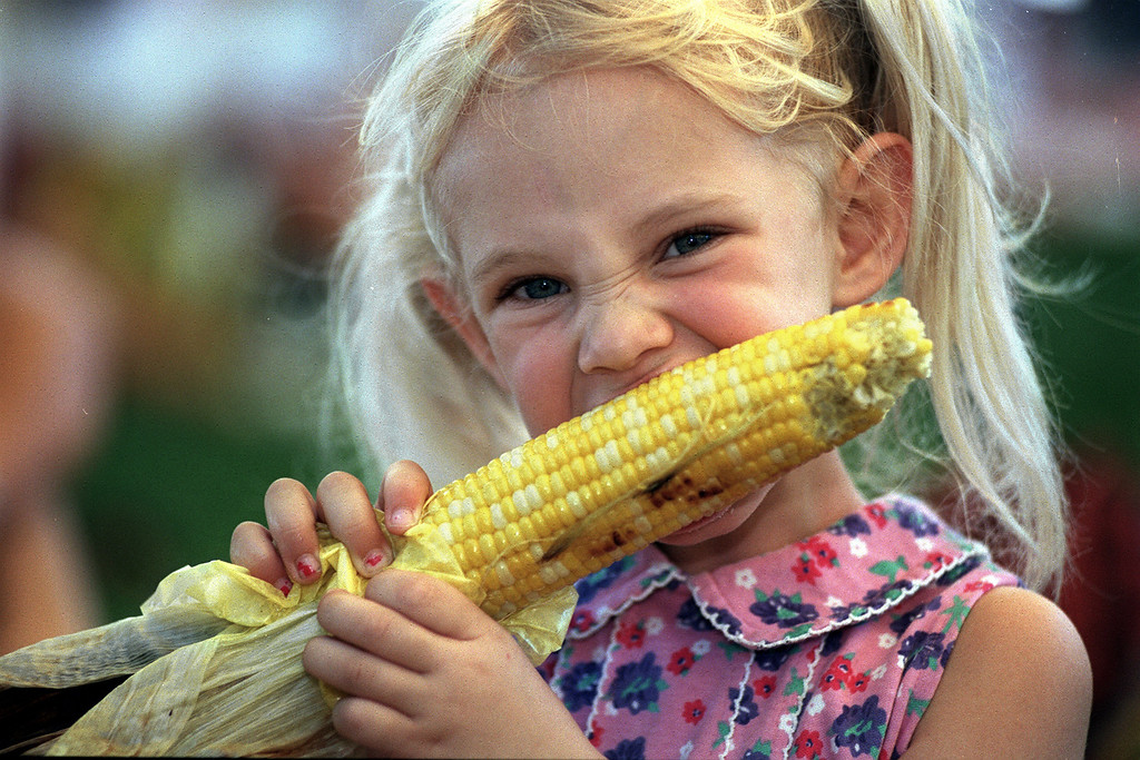 . Hannah Trent, 4, (of Lakewood) digs into a an ear of  roasted corn from Calidonia\'s while visiting \'A Taste of Colorado\'  with her family September 4, 1998. The festival continues through Monday, offering  food, arts & crafts and entertainment.   Photographer: Craig F.  Walker / The Denver Post