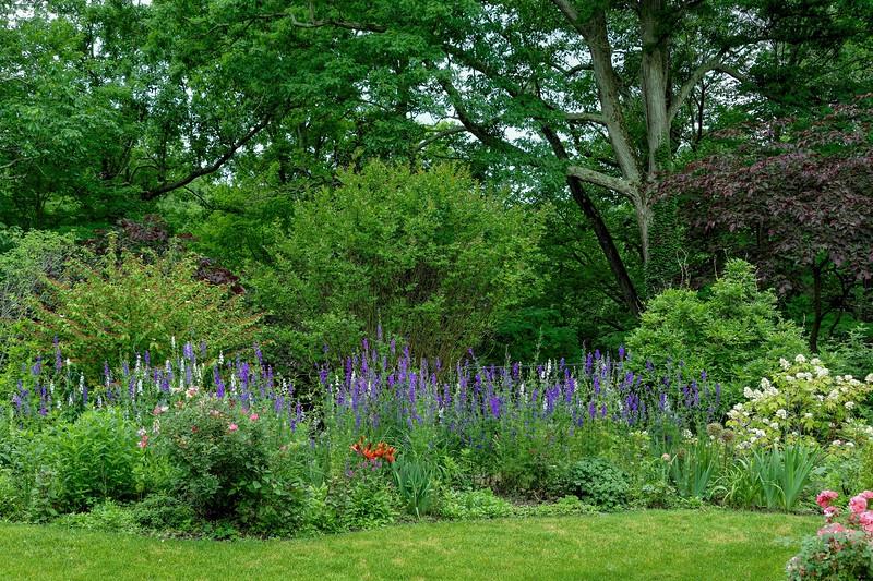 Garden 1, 118.jpg