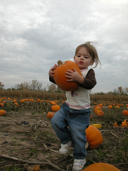 10-20-08 Lily @ Pumpkin Patch