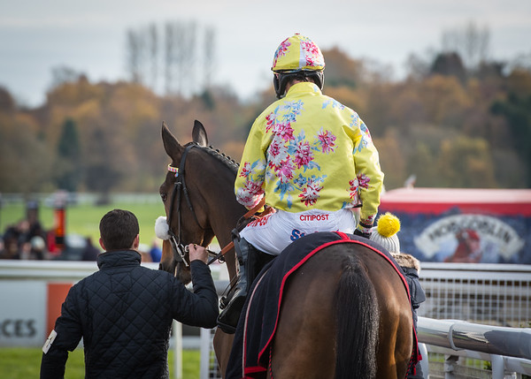Uttoxeter Races - Sat 18 Nov 17
