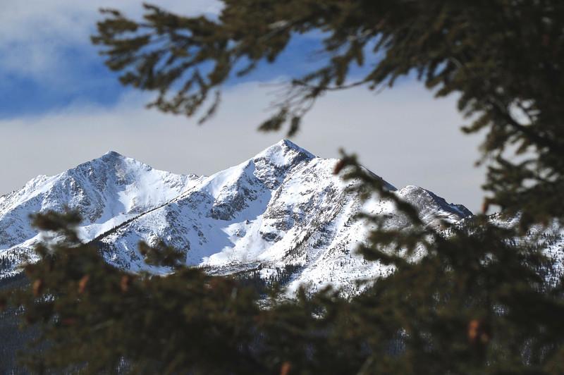 Colorado Mountain Scene