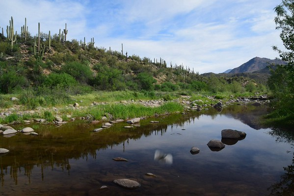 Arizona trip April 2015
