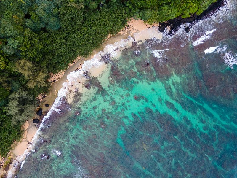 Kauai 2020-1.jpg