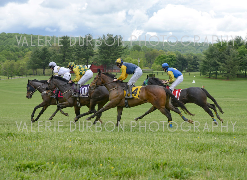 Valerie Durbon Photography Gold Cup876.jpg