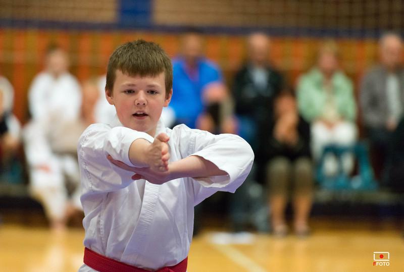 Taastrup karate klubmesterskab 2014 -DSC_3485.jpg