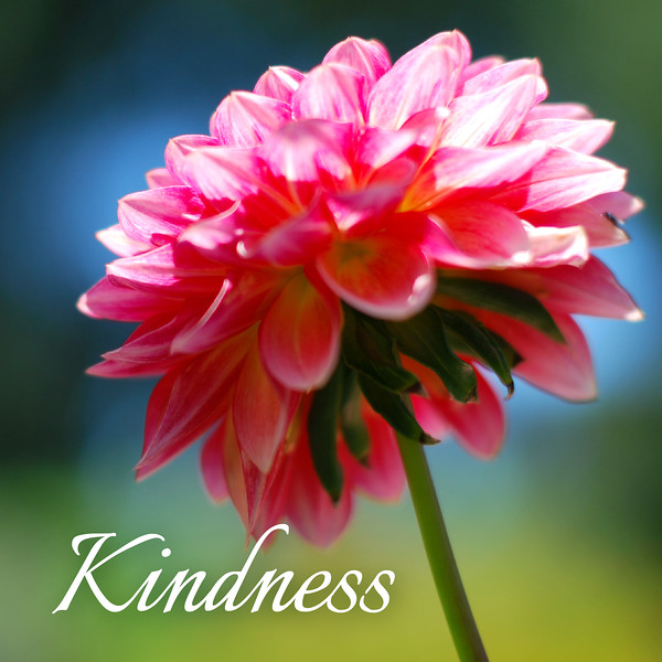 48_Galatians5-22-23_NJ_Fruit of the Spirit_4-23-17_5-Kindness.jpg
