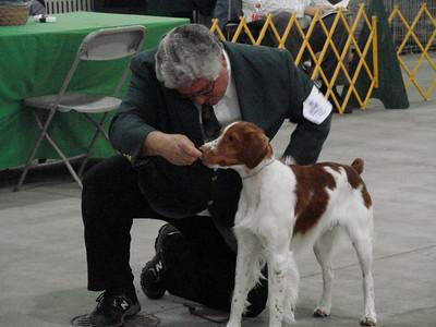 Sacramento Kennel Club Dog Show
