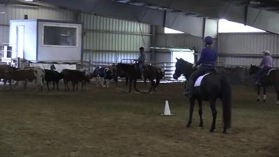 TSRC 2019-09-17 Miran Farm Videos