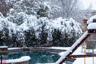 2010.2.11.Snow