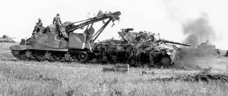 M31 ARV