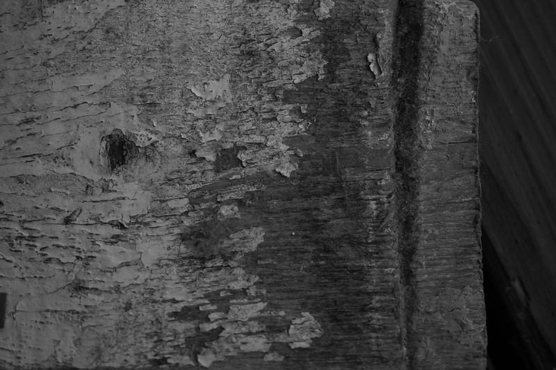 Wood Peeling Paintbw.jpg