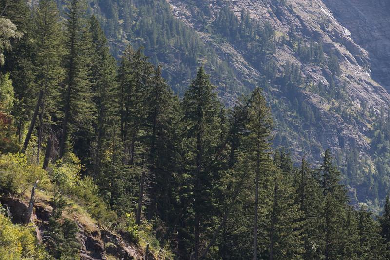 20160826-Glacier National Park-_28A2614.jpg