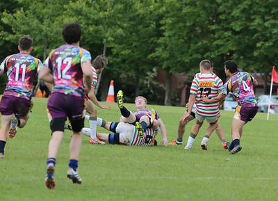 Hungary Amateurs v Cobras Rugby