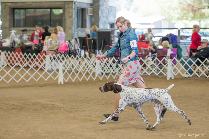 2019 Malibu Kennel Club-0102.jpg