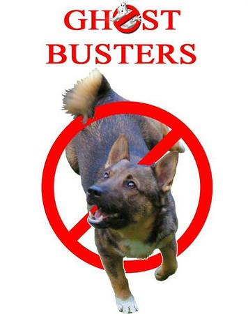 12 oktober 2003 Dogdancewedstrijd Gaus - Ghostbusters