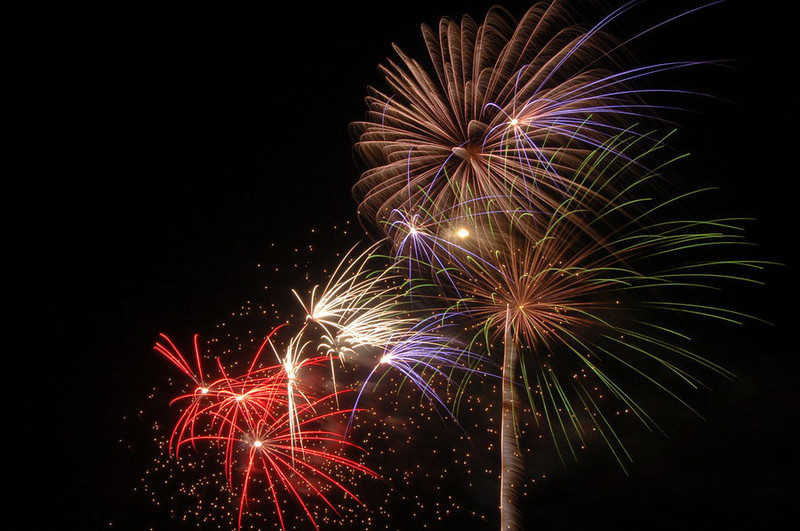 palm_tree_fireworks_1_by_victorg6546.jpg