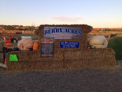 Berry Acres - Minot, ND  Oct. 2016