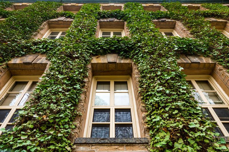 Princeton U_Ivy 4-15-2017-4542.jpg