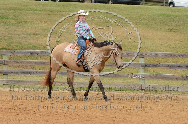 PSC Open Fun Horse Show Oct 12, 2013