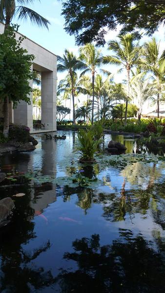A pond near the resort.
