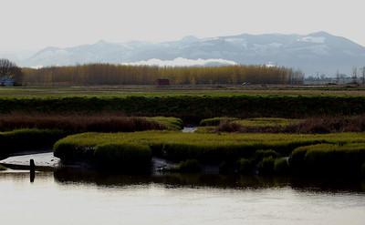 Samish River 4-15-11