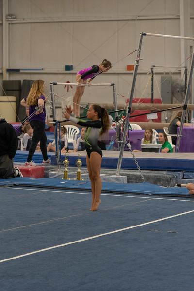 Brianna Gymnastics-0317.jpg