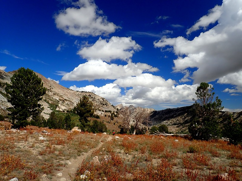 Ruby Mountains Wilderness Nevada