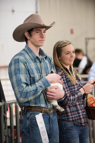 Hays County Show-0488.jpg