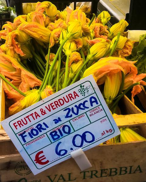 zucchini flowers.jpg