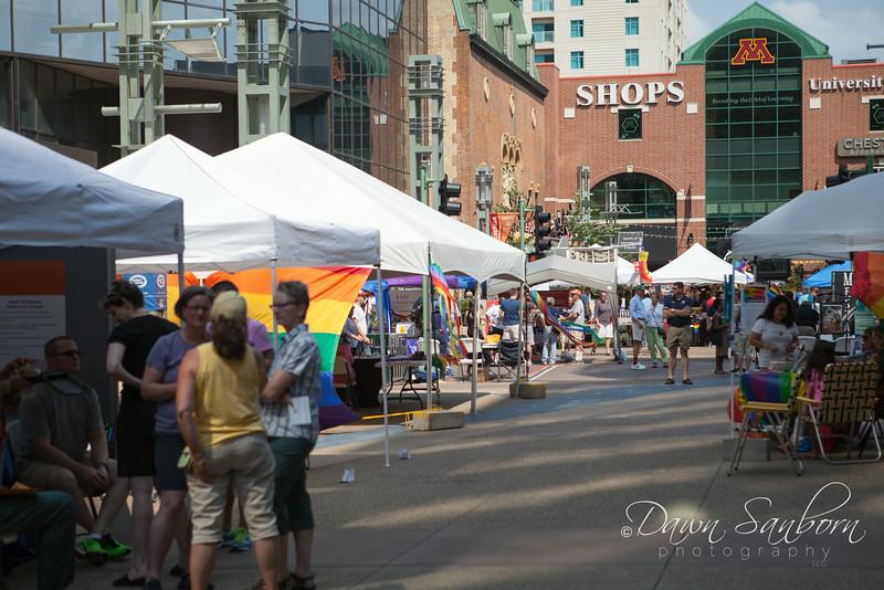 DSP Pridefest 2014-6287.jpg