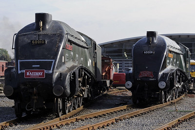 National Railway Museum, Shildon (Locomotion), 2012: A4s 60008 & 60010